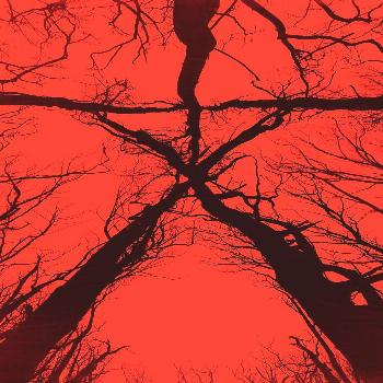 The Blair Witch Is Back With A Vengeance The Blair Witch is back with a vengeance in this movie tha
